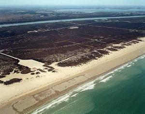 Playa de Levante-  Los Toruños - Guía de ocio CADIZ